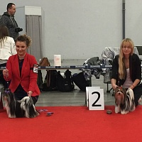 Great news from Kielce (Poland) International Dog Show